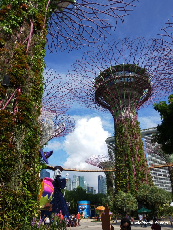 OPPO R15 Pro Ultra HD test image - Gardens By The Bay Singapore