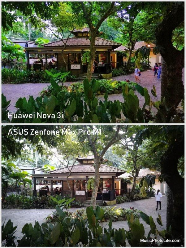 Huawei Nova 3i vs. ASUS Zenfone Max Pro M1 - camera sample: low light AI greenery