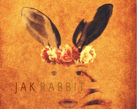 Jak Rabbit 4