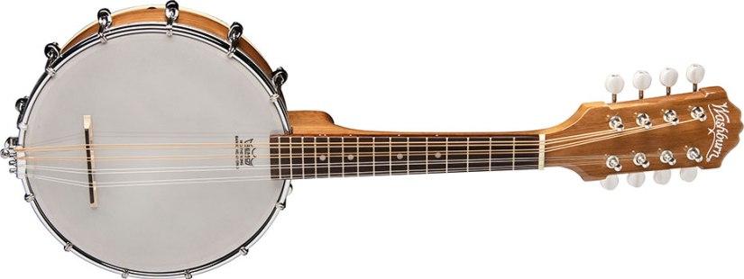 Banjo Mandolin Washburn