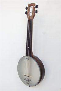 Best Banjo Ukuleles