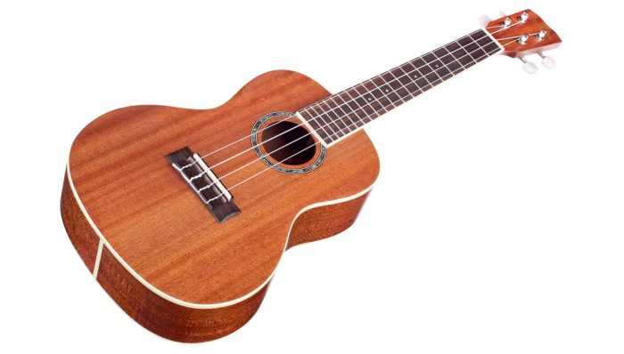 best ukuleles 2018