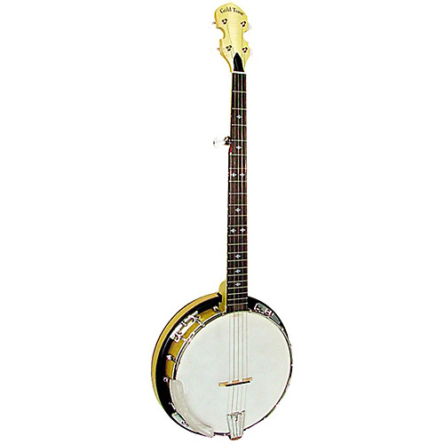 Top banjo for beginners