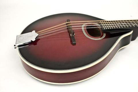 top mandolins for beginners