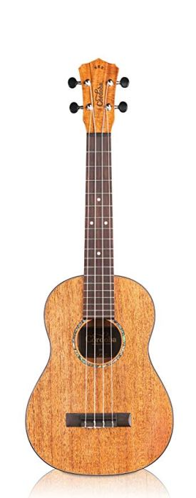 Top Tenor Ukuleles