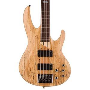 Top Fretless Bass Guitars