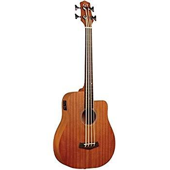 Best Shortscale Bass