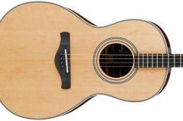 Best Acoustic Tenor Guitar