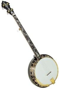 Best Banjo For Professionals