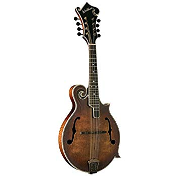 Top Vintage Mandolins