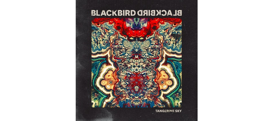 blackbird-blackbird