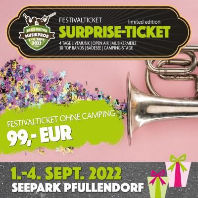 Surprise Festival-Pass Musikprob Brassfestival 2022