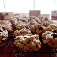 Oatmeal Chocolate Chip Pecan Cookies