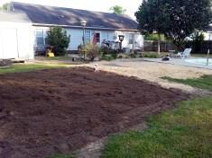 Future home of my veggie garden!