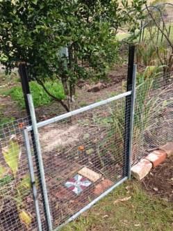 established-veg-garden-5