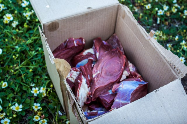 6 kg of meat for 6 hungry cyclists - one sitting