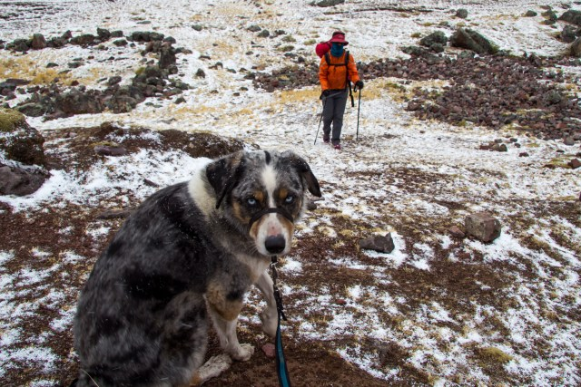 """Why have you brought me here?"" Sora's face says it all. I found Dave sheltered behind a large boulder in a snow storm (which the local's called rain)."