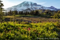 Early Evening on Mt Rainier