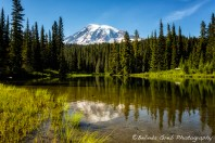 Mt Rainier from Reflection Lake, No. 3