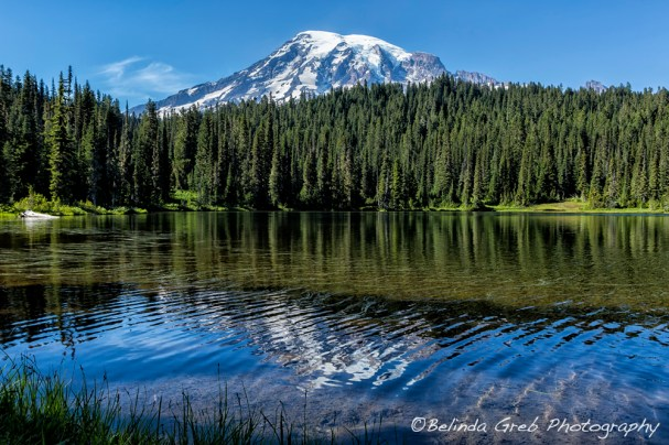 Ripples and Reflection Mt Rainier