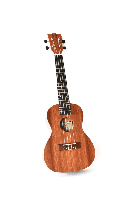 Tyro ukulele available at Steve's music in Montreal