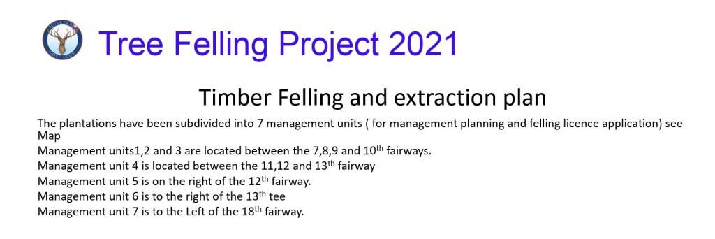 tree felling project