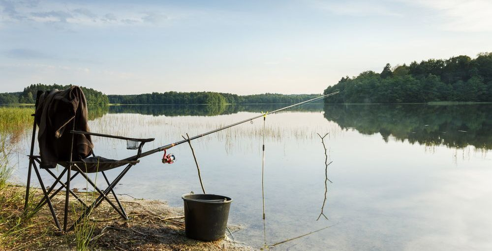 Freshwater Gamefish In The US