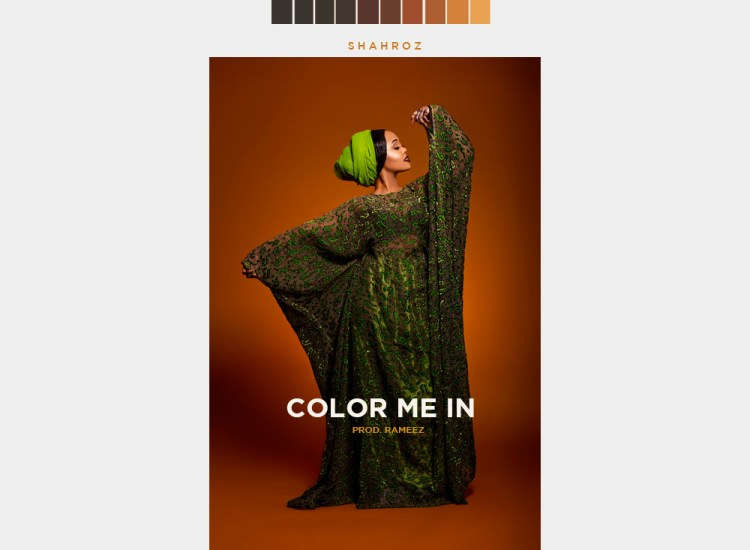 Rapper Shahroz's 'Color Me In' Tackles Colorism in our Communities