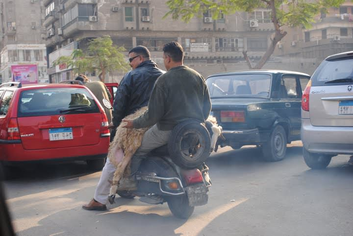 https://i1.wp.com/muslimmatters.org/wp-content/uploads/2009/11/amatullah_bikes.JPG