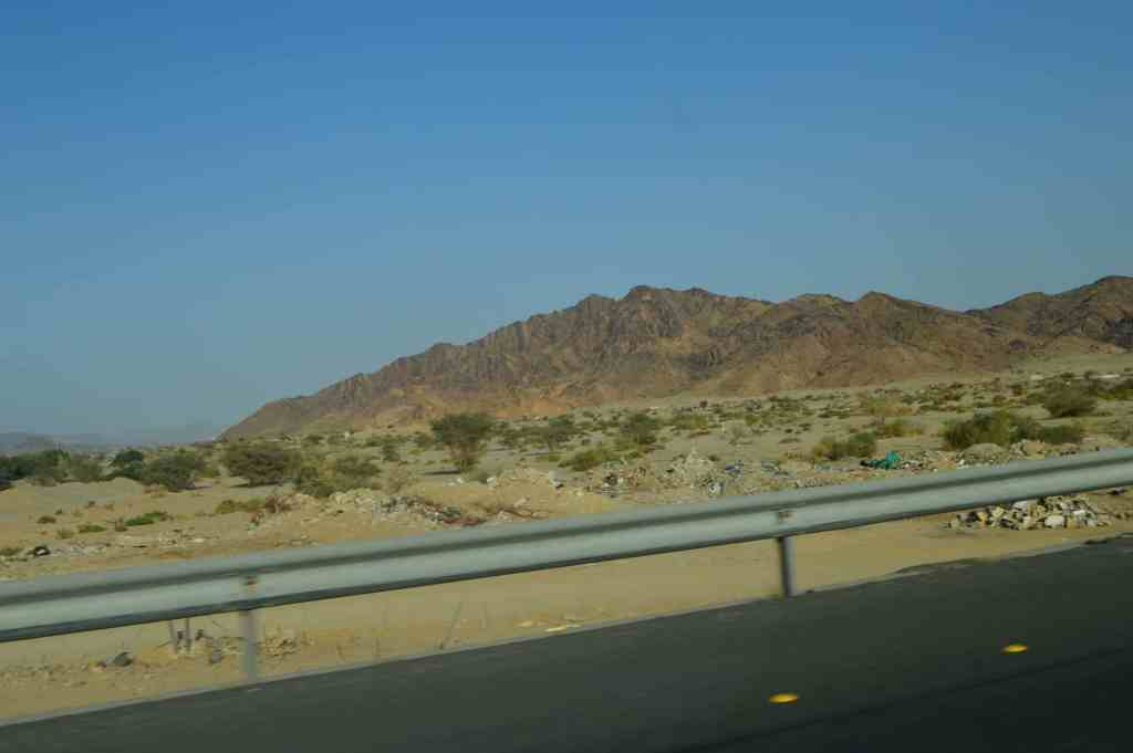 medina muslim travel girl