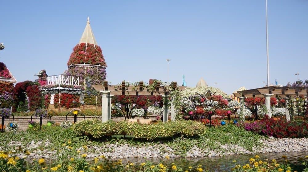 miracle garden dubai1020resized