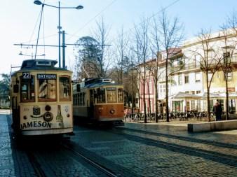 17. Zabytkowe tramwaje