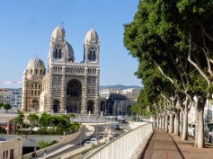 1-katedra