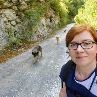 2. Psy idą z nami
