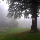 Mgła - zawsze z nami!