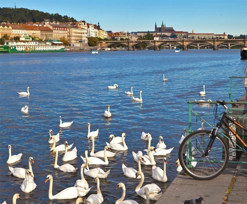 If you are visiting Prague during the summer season, no better place than Náplavka at the river bank to witness a beautiful sunset behind Prague Castle   The Ultimate 3-Day Itinerary for a Trip to Prague