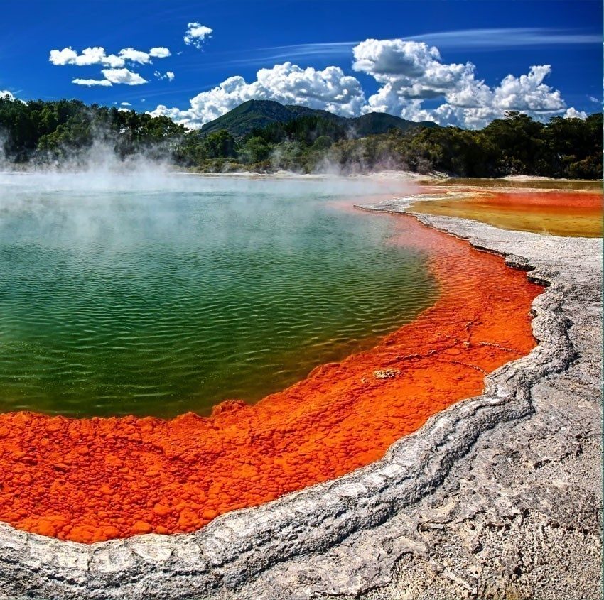 View of Thermal lake Champagne Pool at Wai-O-Tapu near Rotorua | 7 Awesome Things to Do in New Zealand