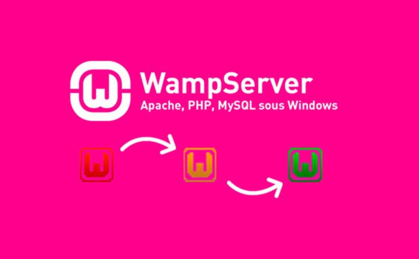 Wamp Server Kurulumu – Wamp Server Nedir?