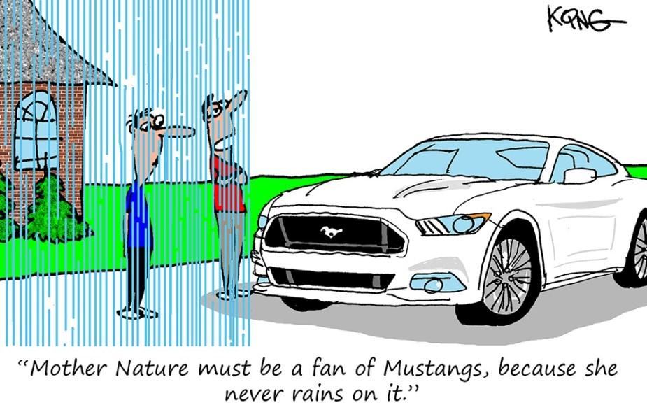 Mustang Forum Funnies - Rain