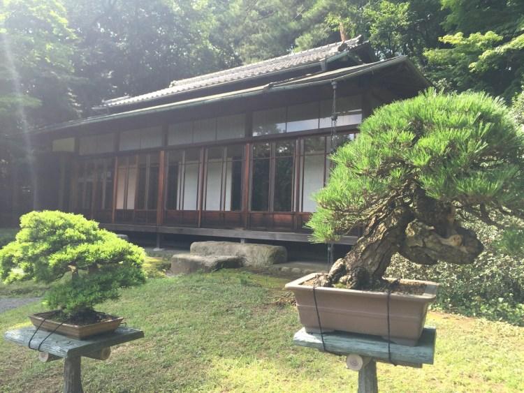 Tea House and Bonsai trees