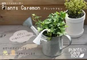 """常讓植物枯萎的人有福了! 想要水時會提醒你的""""植物關心家"""""""