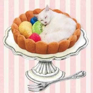 Felissimo貓部‧搖身一變成為美味水果塔上的一角!「睡得香甜的可愛貓用靠墊☺♡」