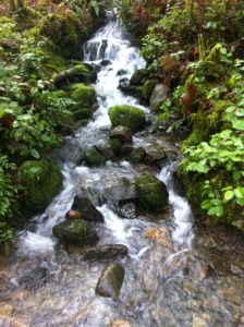 hollandcreek-creek