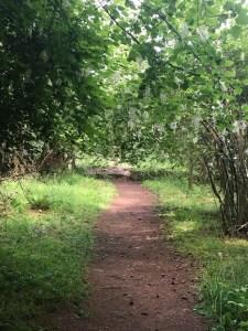 trails in ruckle park on salt spring