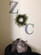 Galvanized Letters, Fern, and Oliver.