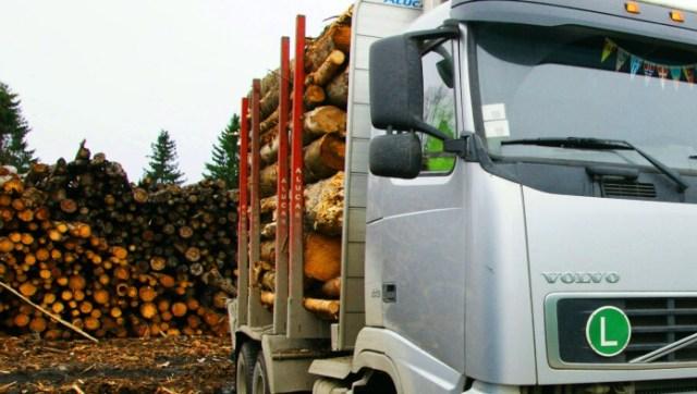 Карелия экспортирует, в основном, сырье. Фото: Губернiя Daily