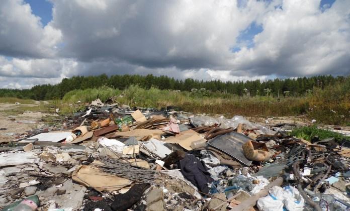 Волчья поляна на окраине карельского поселка Пиндуши превращена в свалку. Фото: Алексей Владимиров