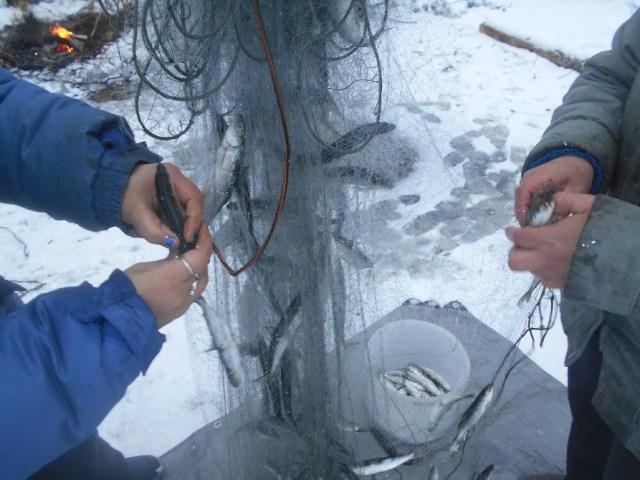 У карелов женщины принимают участие в зимней рыбалке наравне с мужчинами. Фото: Людмила Капанен