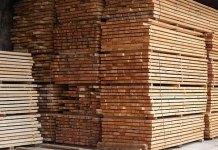 """Компания НПО """"ФинТек"""" считается в Карелии стратегическим инвестором и не рассчитывается вовремя за арендуемый ею лес. Фото с сайта компании"""