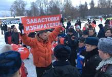 """""""Забастовка избирателей"""" в Петрозаводске. Фото: Валерий Поташов"""